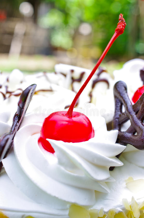 Download Cherry stock image. Image of cherry, cream, sweet, styling - 26537759