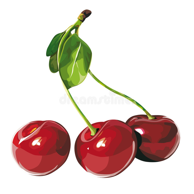 Free Cherry Stock Photo - 4682810