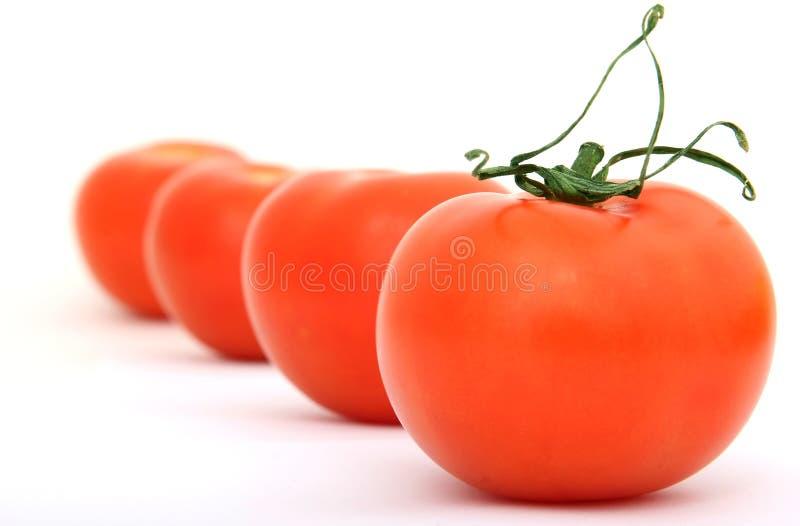 cherry badyla czerwony zielony zdrowe pomidor obrazy royalty free