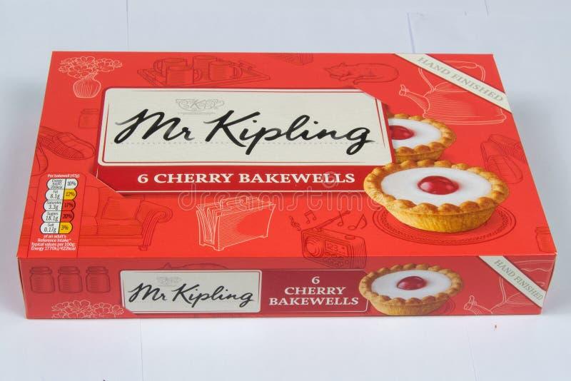 Cherry Bakewell Tarts fotografía de archivo libre de regalías