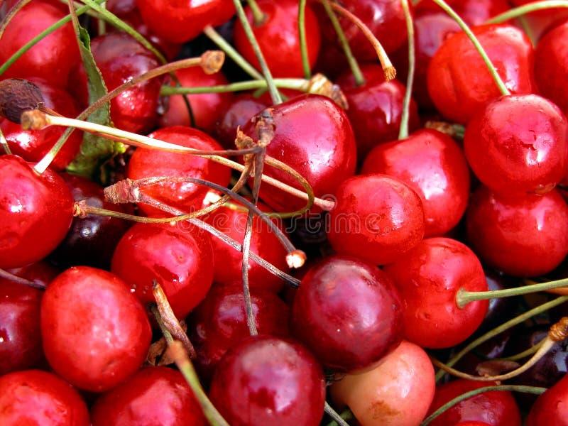 cherry barwiąca zdjęcia stock