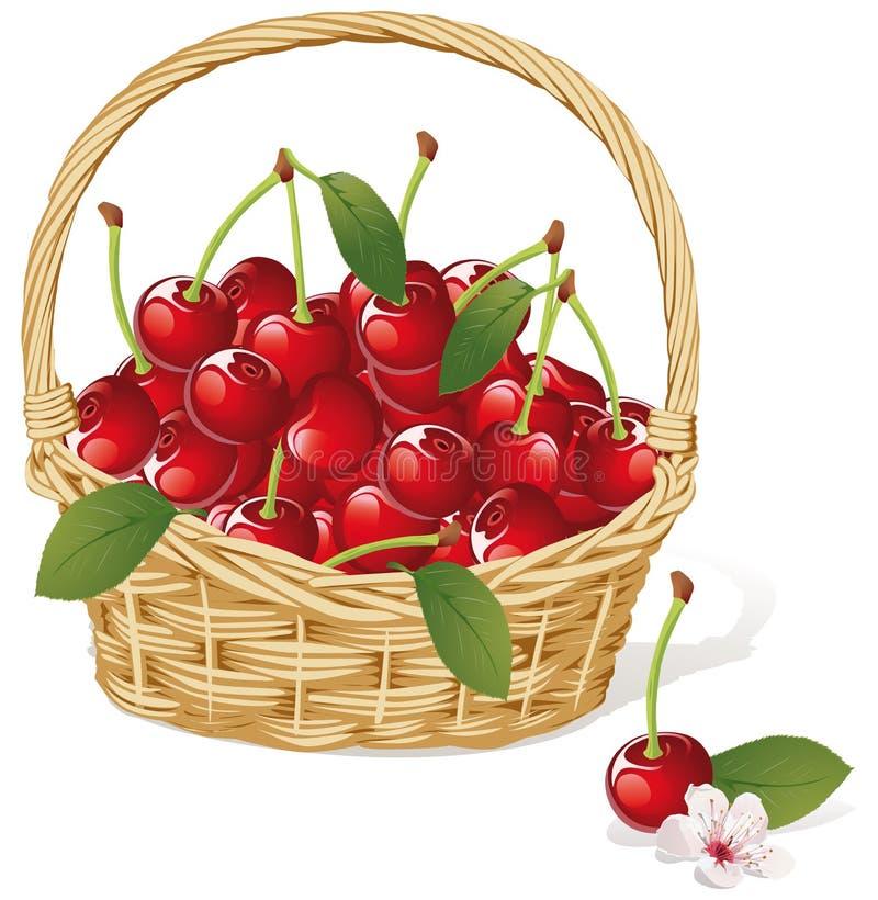 Free Cherry Basket Royalty Free Stock Image - 26652366