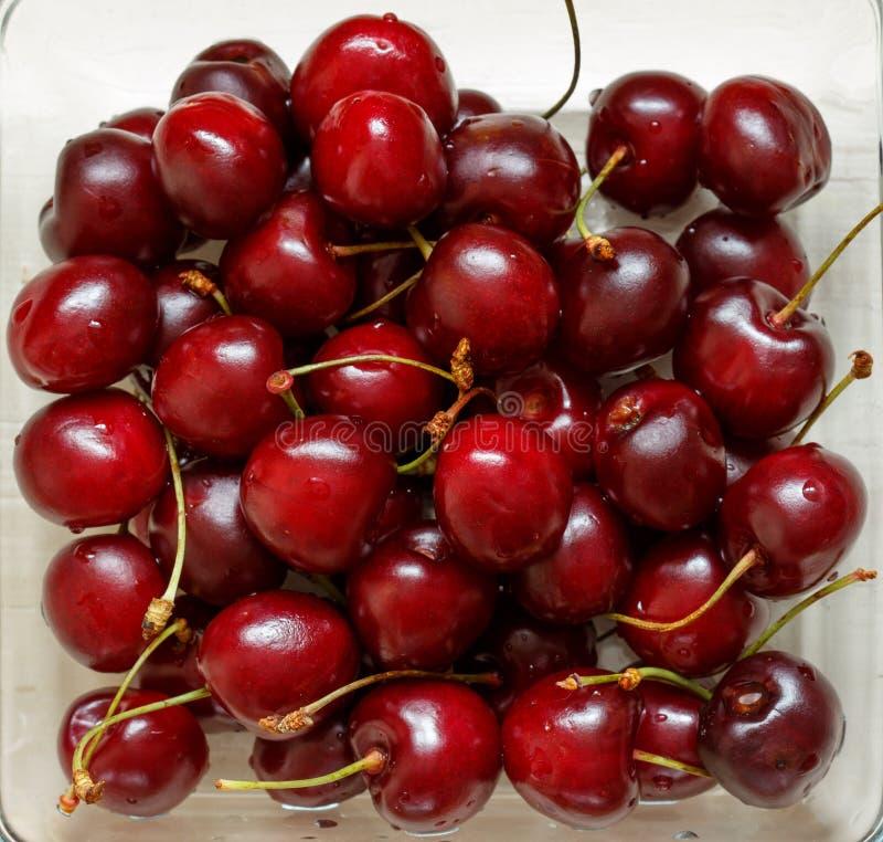 Cherry Berries fotografia stock libera da diritti