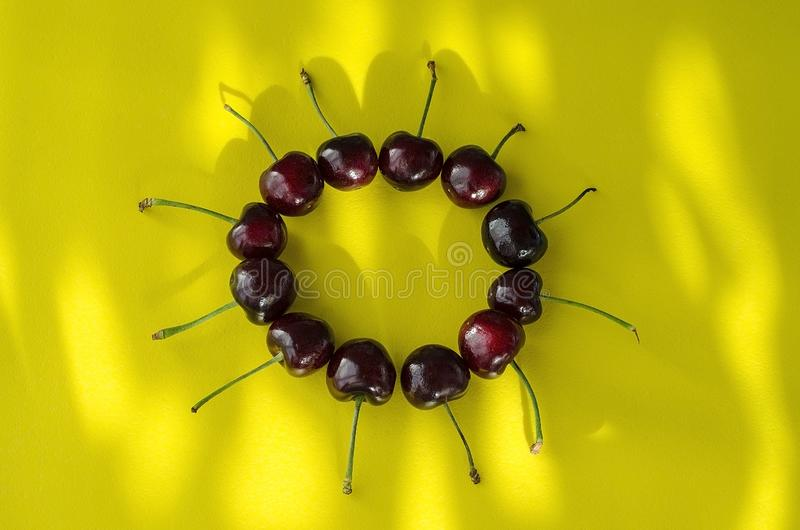Cherry berries on a bright yellow background in the form of a circle with sun highlights. Summer morning stock photo