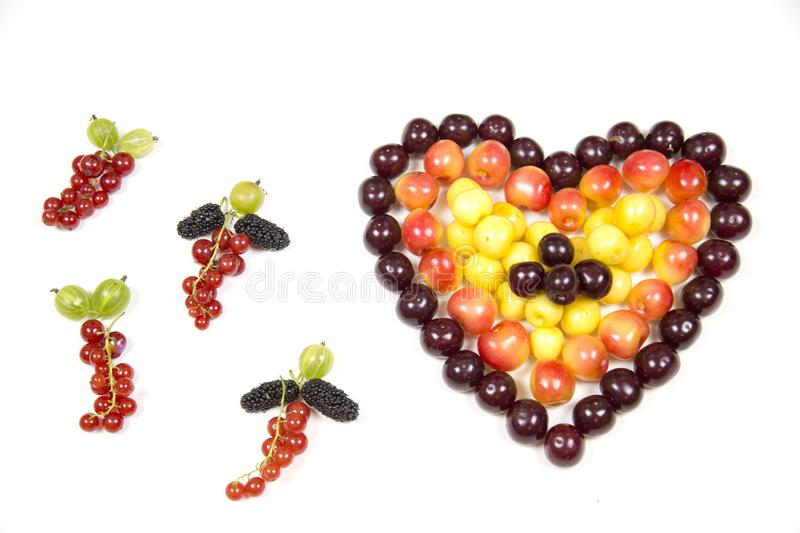 Cherry berries cherries in the form of a heart of red pink yellow and tassels of red currant gooseberry mulberry isolated on a whi royalty free stock image