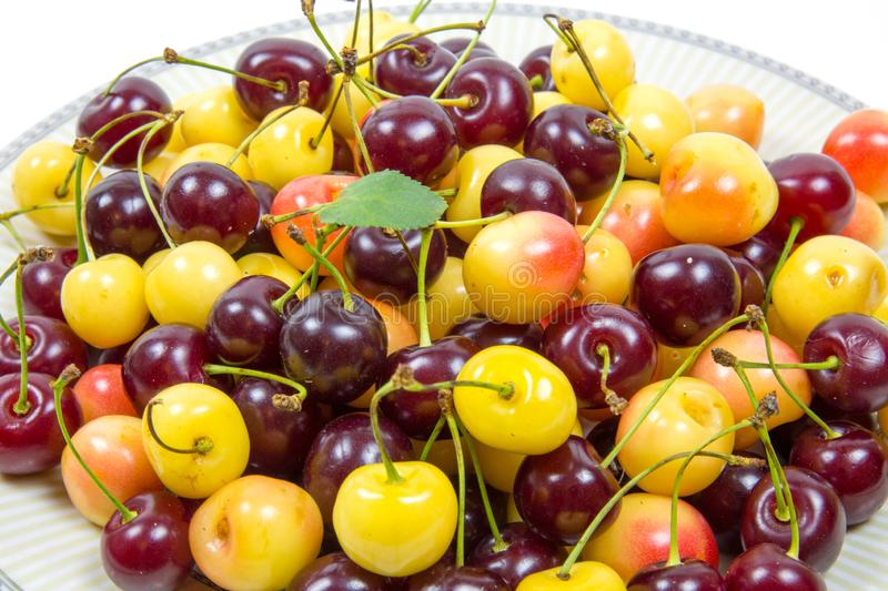 Cherry berries cherry red pink yellow with cuttings leaves. royalty free stock photos