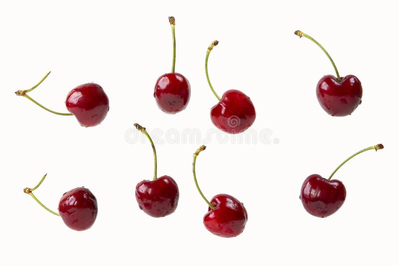 Cherry berries isolated on a white  in a chaotic manner royalty free stock photo