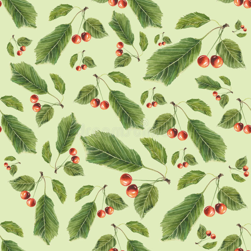 Cherry berries and leaves on light green background. Watercolor hand made. Seamless colorful pattern royalty free illustration