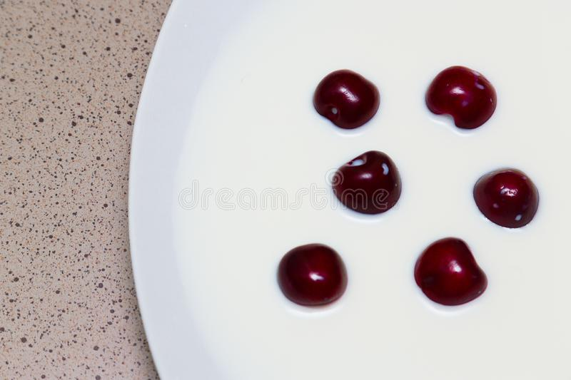 Cherry berries in milk. Farm products royalty free stock photography