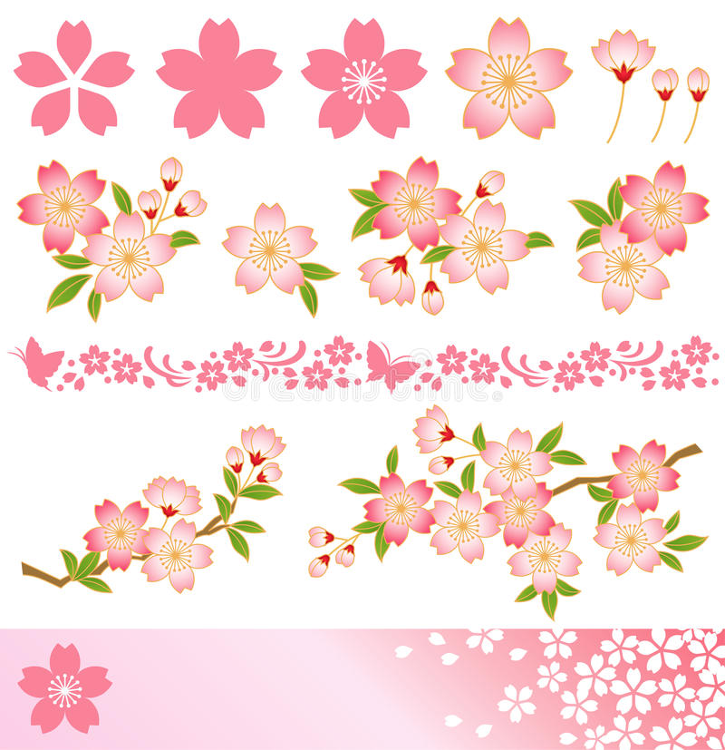 Download Cherry blossom stock vector. Image of culture, japan - 16160394