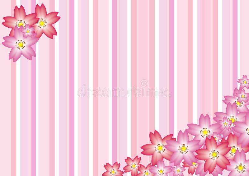 Cherry Blossom. Illustration of Sakura Cherry Blossom Background royalty free illustration