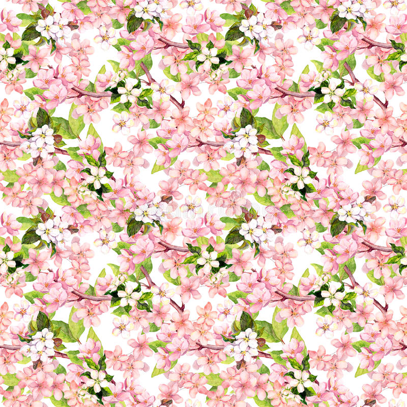 Cherry blossom - apple, sakura flowers . Floral seamless pattern. Watercolor. Cherry blossom with apple, sakura flowers . Floral seamless pattern. Watercolor stock photography
