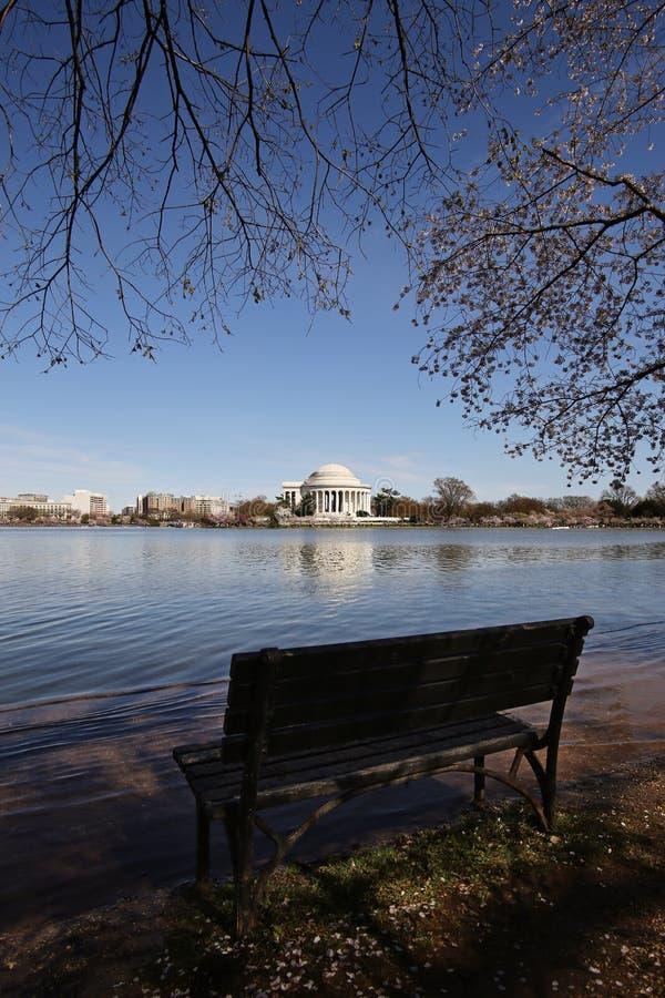 Cherry Blossom avec le fond commémoratif et le bassin de marée photo libre de droits