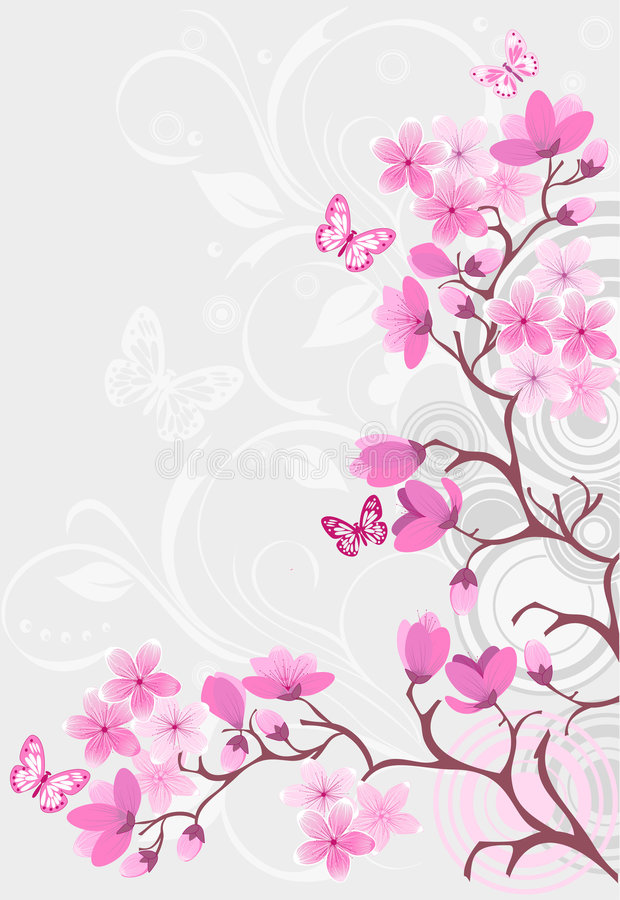 Cherry blossom background royalty free illustration