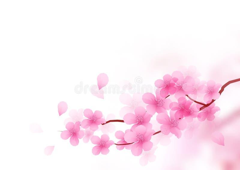 Cherry Blossom Branch Vector vector illustratie