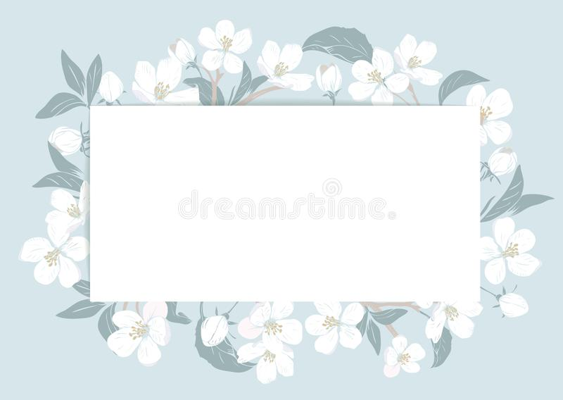 Cherry blossom card template with text. Floral frame on pastel blue background. White flowers. Vector illustration royalty free illustration