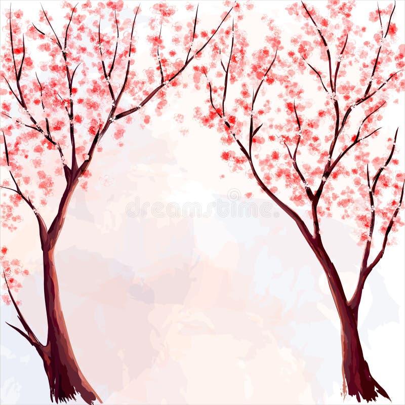 Cherry Blossom De illustratie van de waterverf vector illustratie