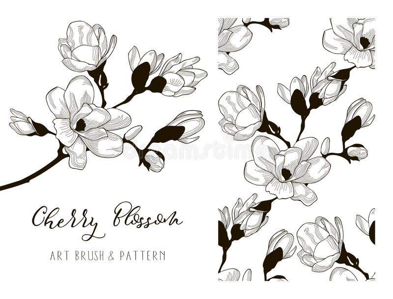 Cherry Blossom Design Art Brush en Patroon Vector vector illustratie