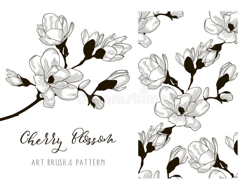Cherry Blossom Design Art Brush och modell vektor vektor illustrationer