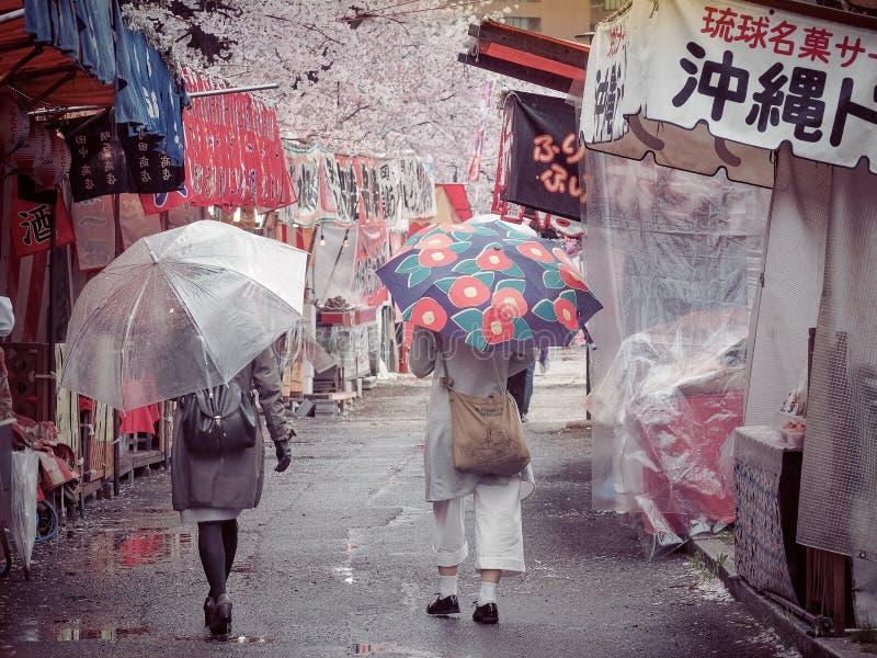 Cherry Blossom Festival Hanami in Osaka Mint Bereau op een Regenachtige Dag stock fotografie