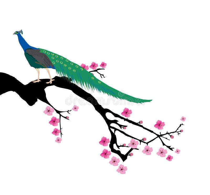 Cherry Blossom filial stock illustrationer