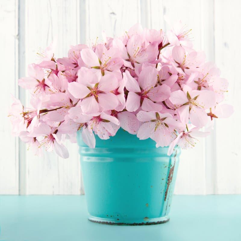 Cherry blossom flower bouquet stock image