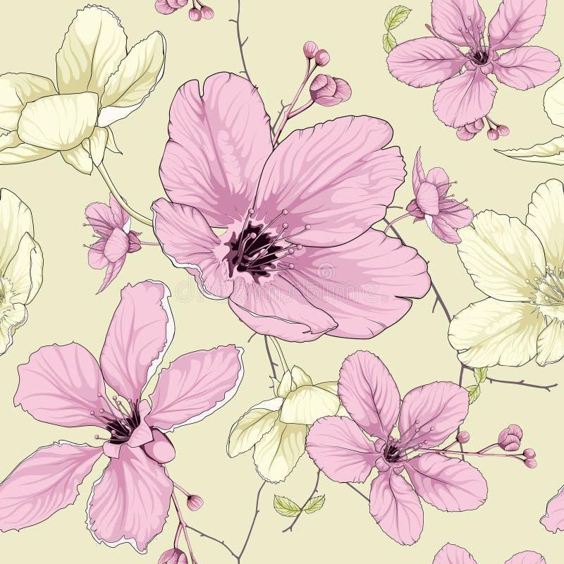 Cherry blossom flower stock illustration