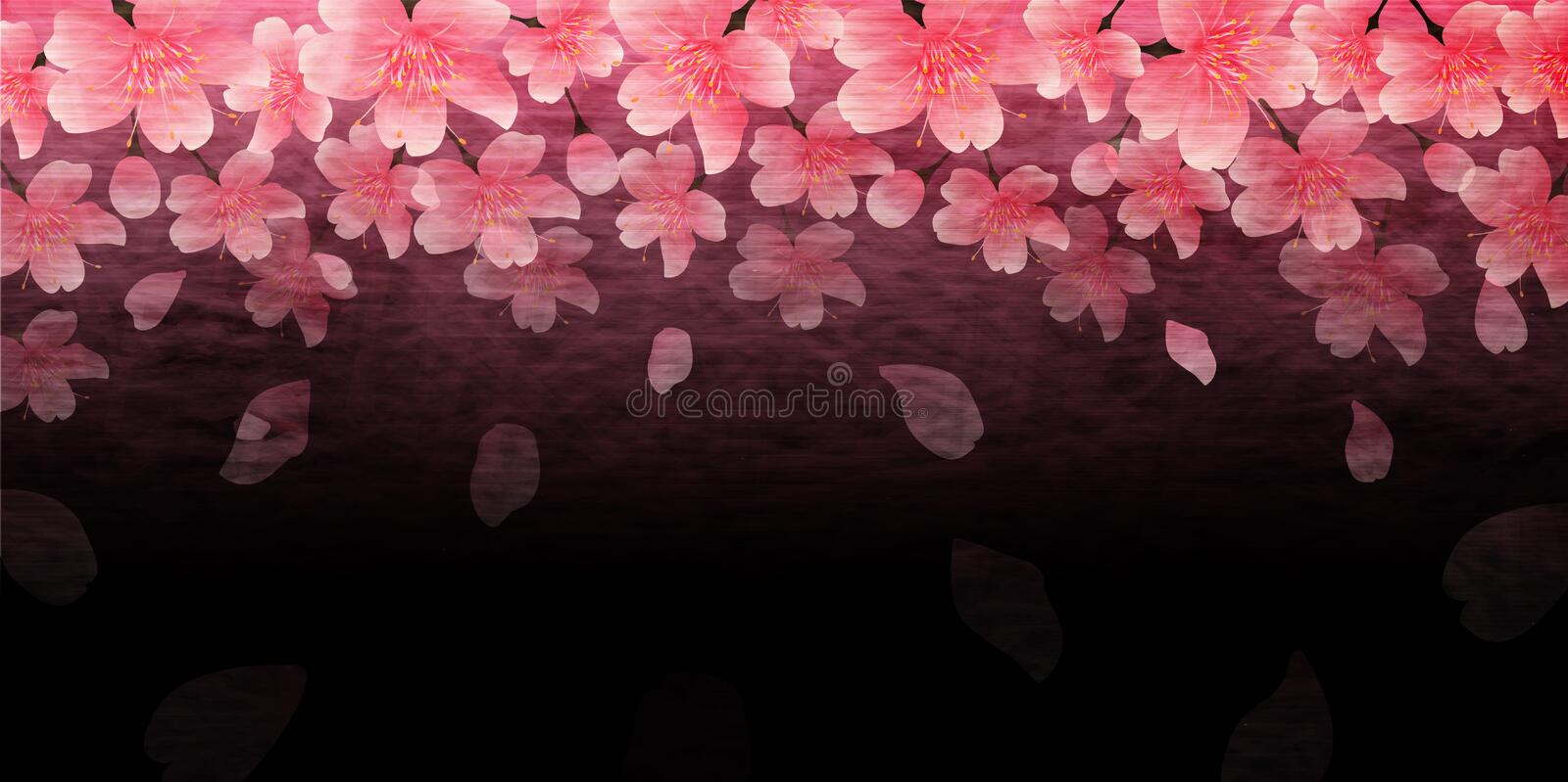 Cherry blossom illustration vector illustration