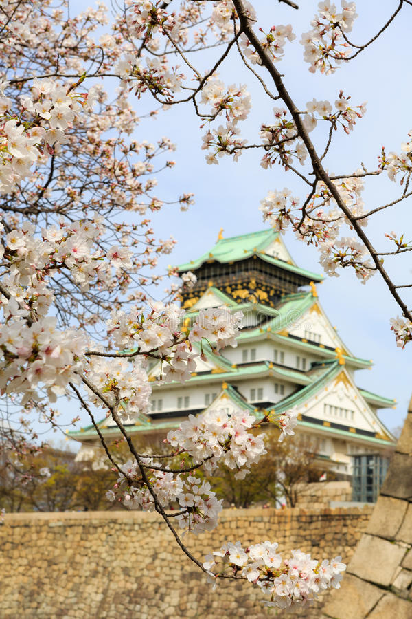 Free Cherry Blossom In Osaka Castle, Osaka, Japan Stock Photography - 49367512