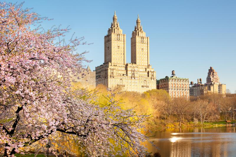 Cherry blossom at the Lake at Central Park and skyline of buildings in Manhattan, New York City. NY, USA royalty free stock photos
