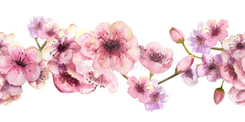 Cherry Blossom Repetici?n de la frontera horizontal del verano Composiciones de la acuarela para el diseño de tarjetas de felicit ilustración del vector