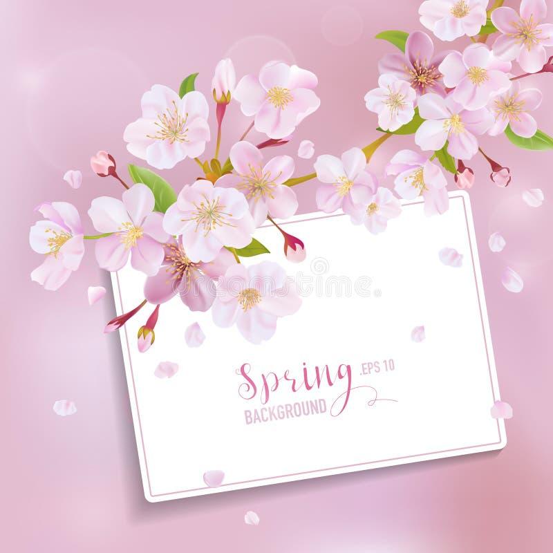 Cherry Blossom Spring Background stock de ilustración