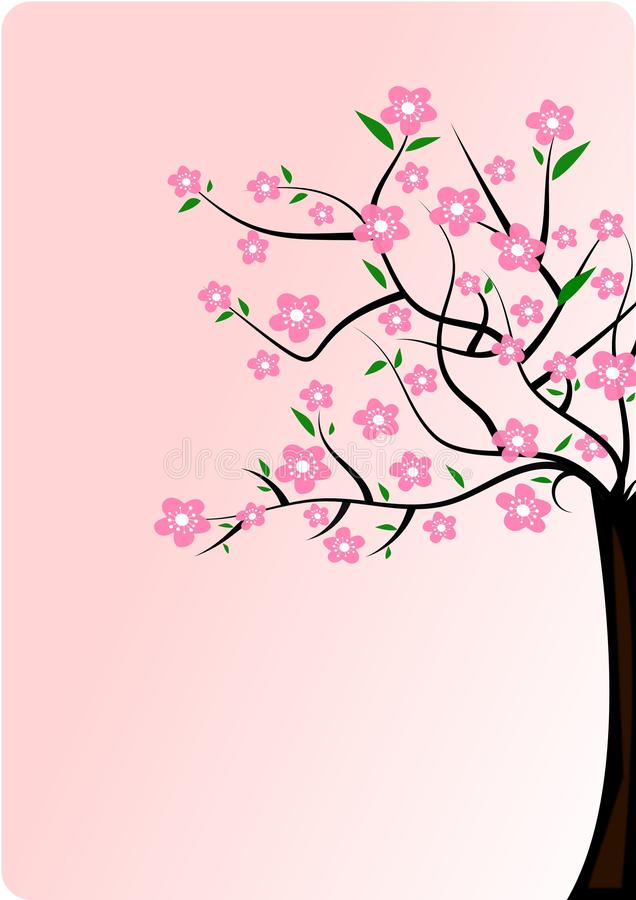 Free Cherry Blossom Tree Stock Images - 13875994