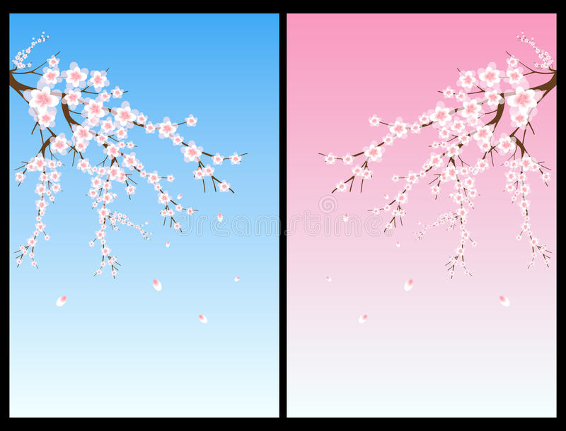 Cherry blossom tree. Set of two backgrounds with cherry blossom tree.EPS file available