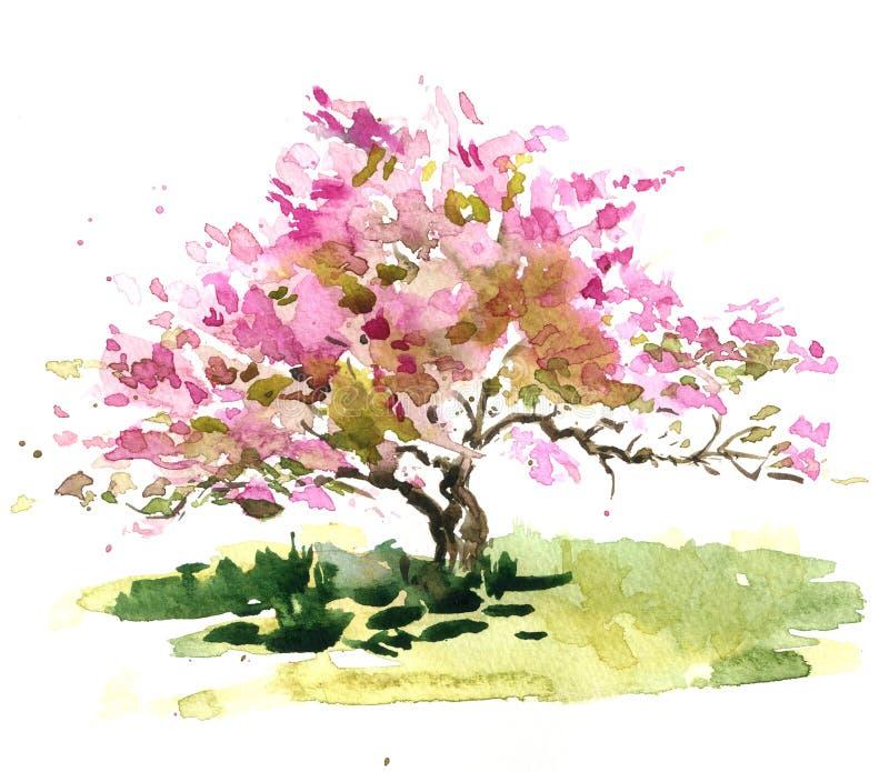 Cherry Blossom Tree stock de ilustración