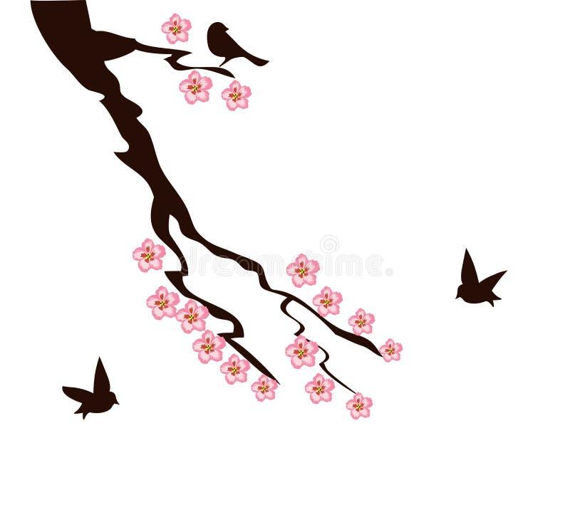 Cherry Blossom Tree Branch stock illustrationer