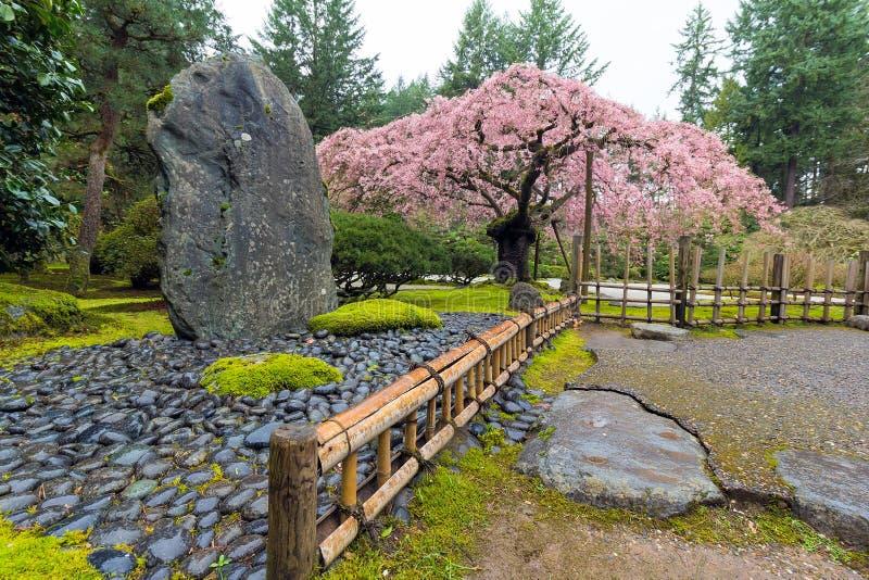 Cherry Blossom Tree par la roche naturelle images libres de droits