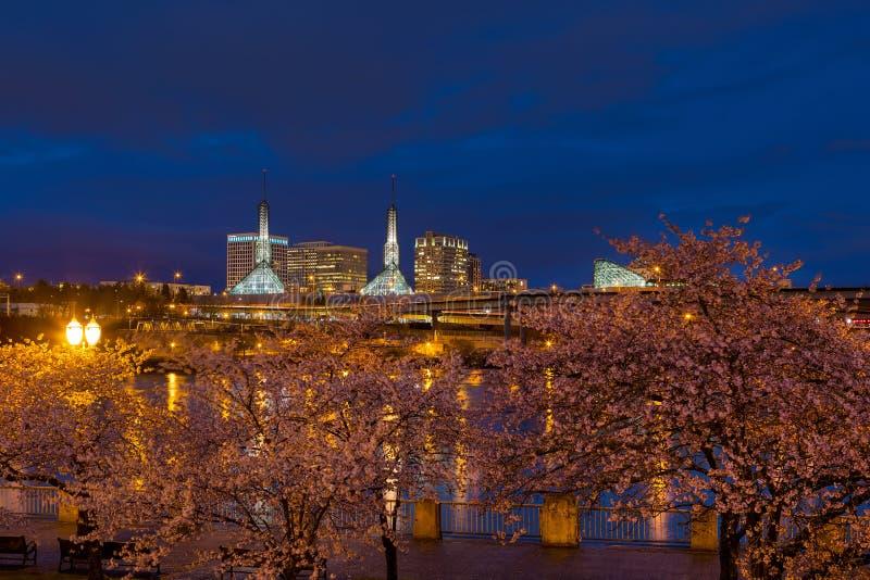 Cherry Blossom Trees na margem de Portland durante a hora azul imagem de stock
