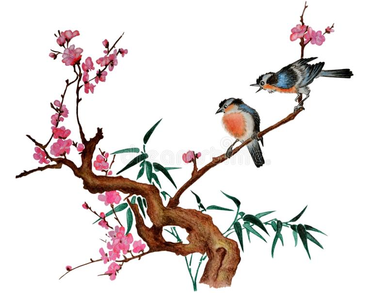 Cherry blossom and two birds royalty free stock image