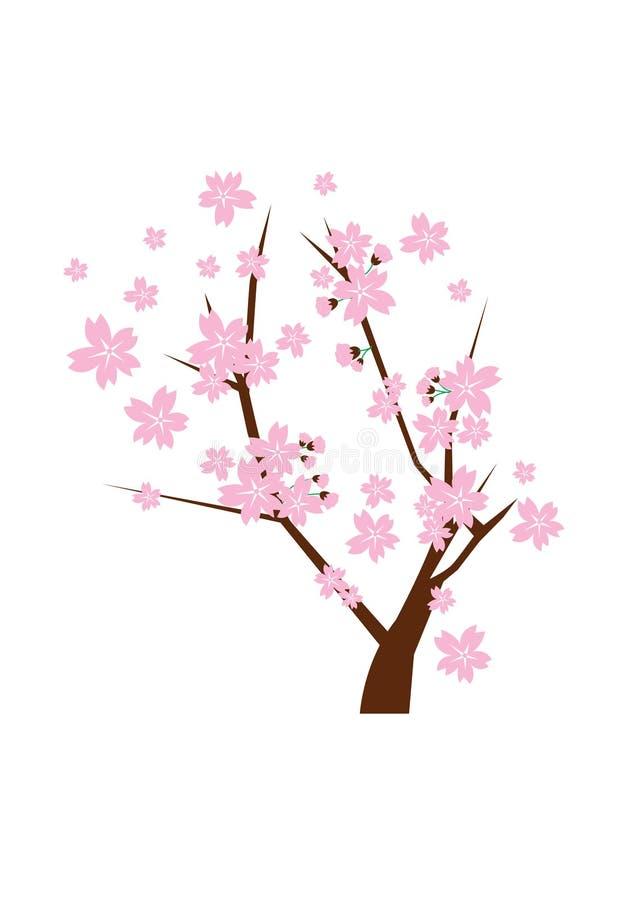 Cherry Blossom Vector fotografie stock libere da diritti