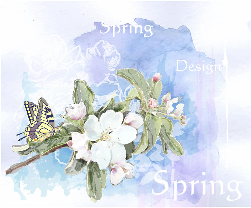 Cherry blossoms and butterfly vector illustration