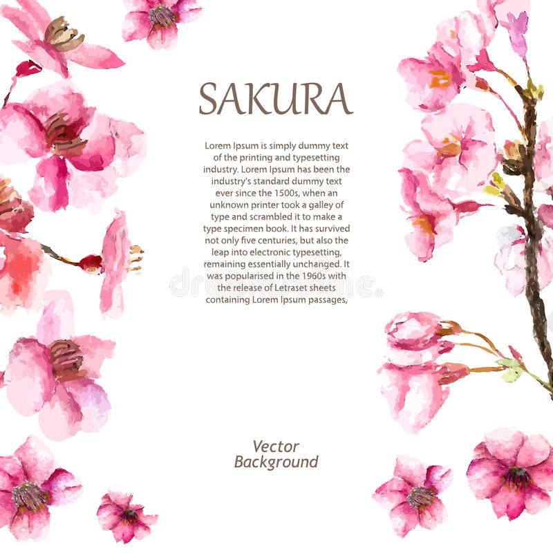 Cherry Blossoms dibujado mano libre illustration
