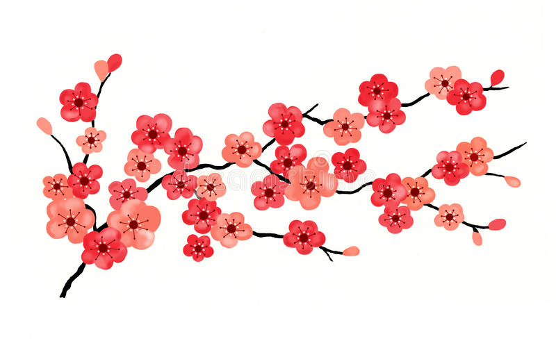 Download Cherry Blossoms Isolated stock illustration. Image of sakura - 18809686