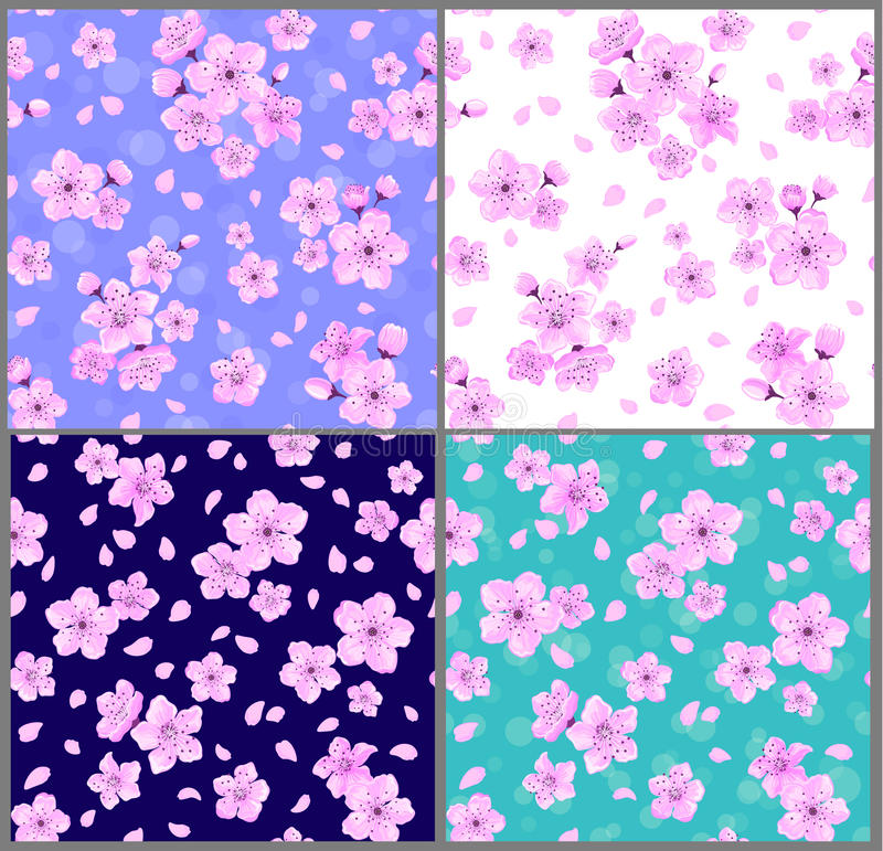 Cherry blossoms seamless patterns vector illustration