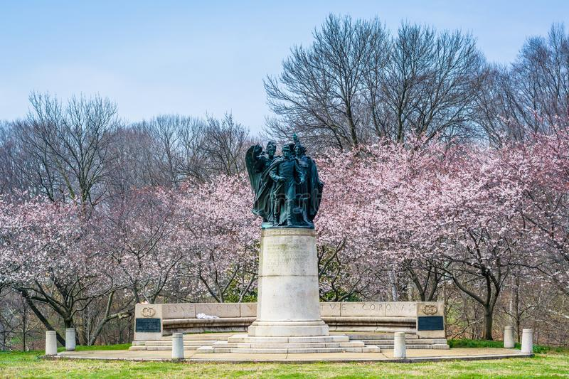 Cherry blossoms and statue at Wyman Park, in Charles Village, Baltimore, Maryland.  royalty free stock photography