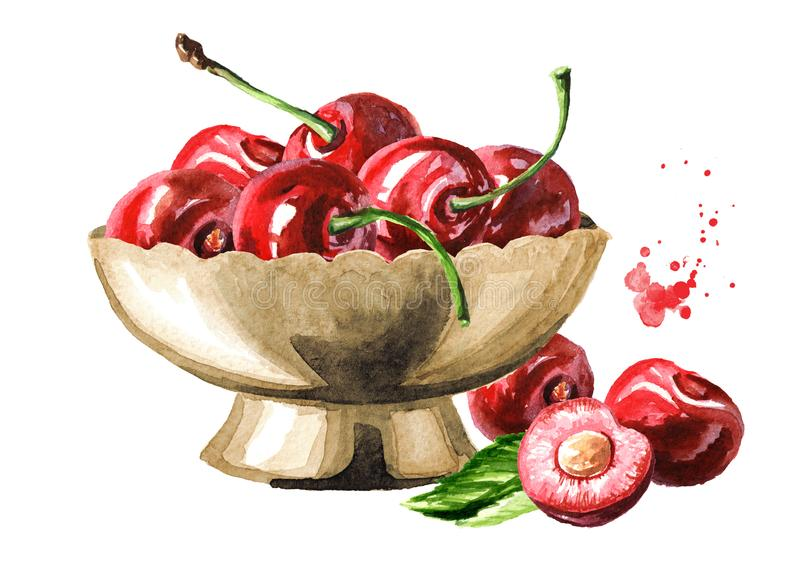 Cherry. Bowl with ripe cherries. Watercolor hand drawn illustration, isolated on white background royalty free illustration