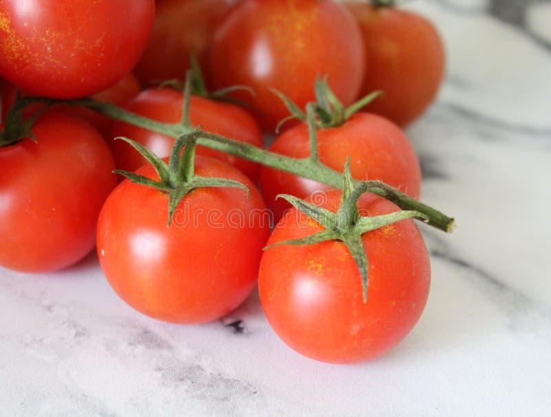 Cherry Cocktail Tomatoes imagem de stock royalty free