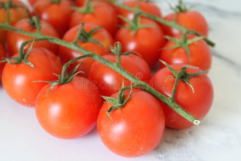 Cherry Cocktail Tomatoes fotos de stock