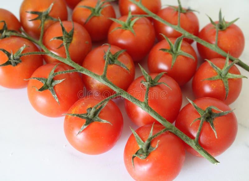 Cherry Cocktail Tomatoes imagem de stock
