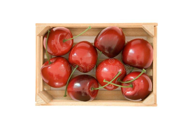Cherry fejkar royaltyfri foto